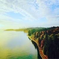 mattari sampo in ドイツ&カナダ&ノルウェー
