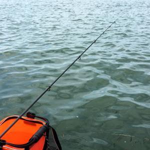 ひょろの釣りブログ