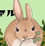 俺様はウサギである