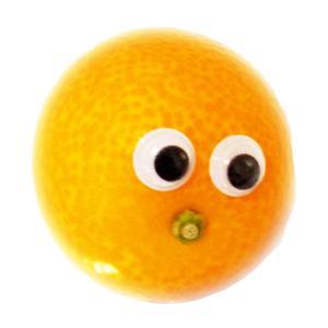 くだモン★旬の果物や野菜の豆知識