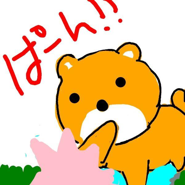 熊がシャケをぱーん!さんのプロフィール