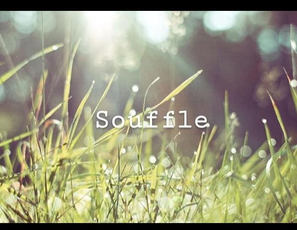 Souffle for Pre Momさんのプロフィール
