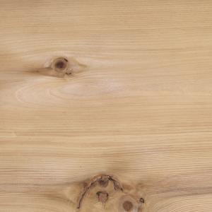 ひととき 〜人と木〜