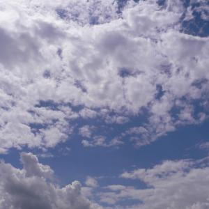 心の風に吹かれて~白い雲のように~ / Nagoya Styles