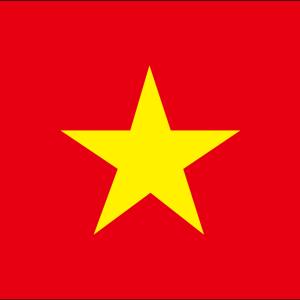 エイジのベトナム株忘備録