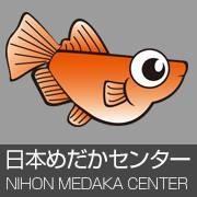 日本めだかセンターのブログ