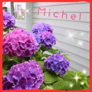 Michel's Life style
