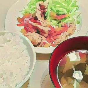にぎやかすぎる食卓〜適当簡単なごはんのレシピと献立〜