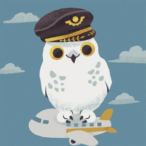 めざせ!パイロット ~パイロットになるには~