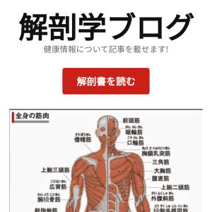 解剖学ブログ