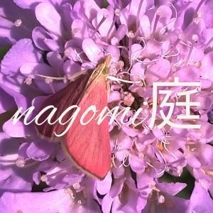 nagomi庭