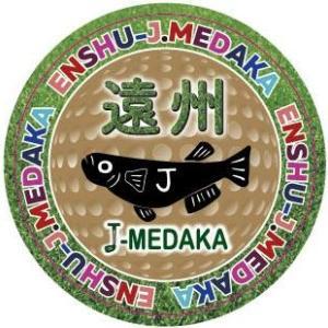 遠州 J-MEDAKAのメダカ飼育