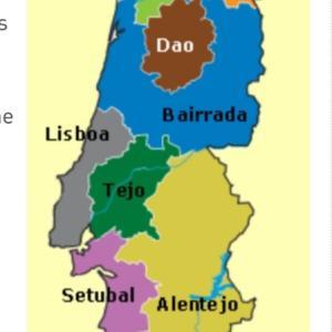 ポルトガルワイン vinho do Portugal