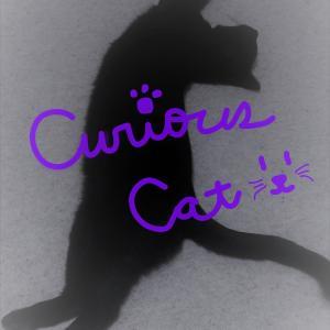好奇心は猫を殺す?のブログ