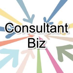 Consultant-Biz