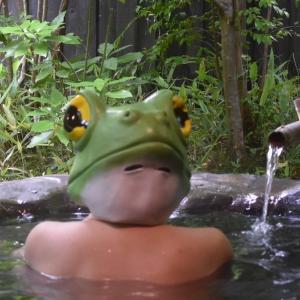 カエルはカエル