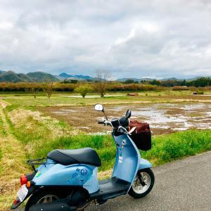 旅好きみゆりんのブログ