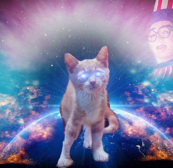 SPACE-CATさんのプロフィール