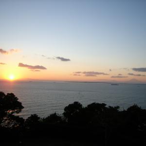 パーム太郎のblog