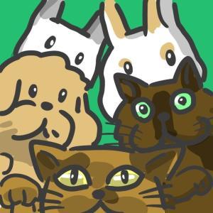 犬猫ウサギのいる暮らし