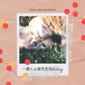 一護くん 楽天生活 Diary.:*:・'°☆
