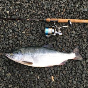 シロクマのブログ~北海道発 釣れない釣行記~