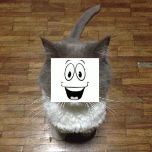 ハシモッコリ・ゲームブログ