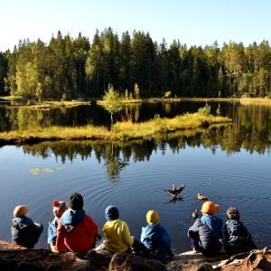 フィンランドの自然に親しもう