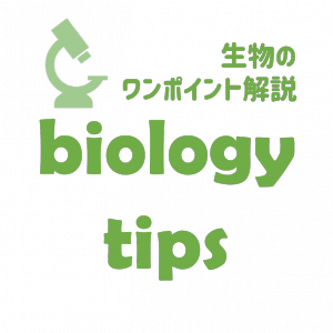 biology tips - 高校生物のワンポイント解説 -