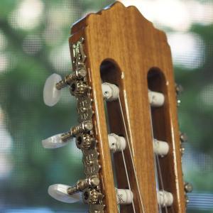 ずっとクラシックギターを弾いてみたかったから