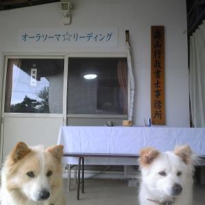タロット+AURA-SOMAサーファーブログ!