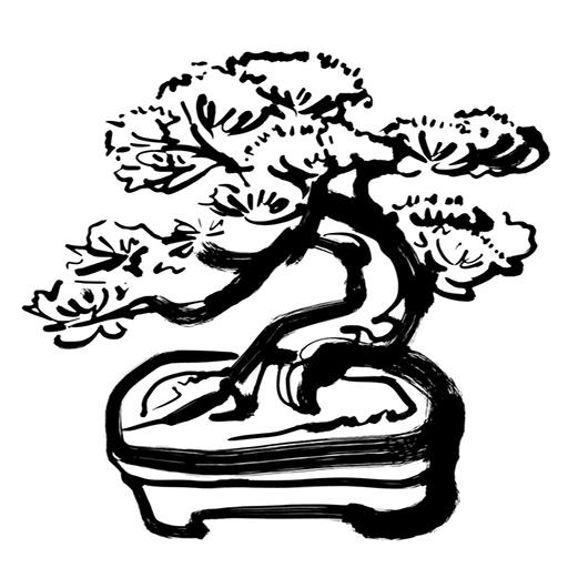 盆樹流さんのプロフィール