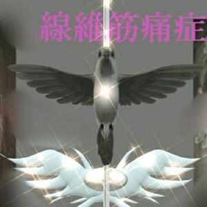 takachin-messiahのブログ