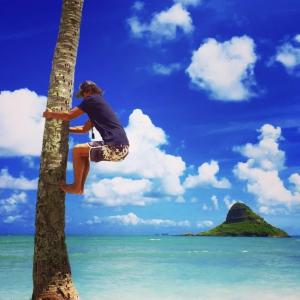 ハワイアンドリームクラブのブログ