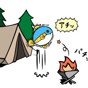ヤキブリキャンプ