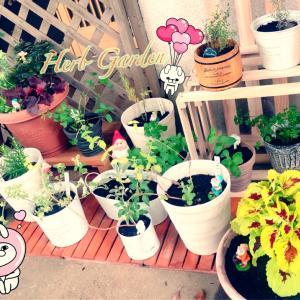 お庭のある暮らし