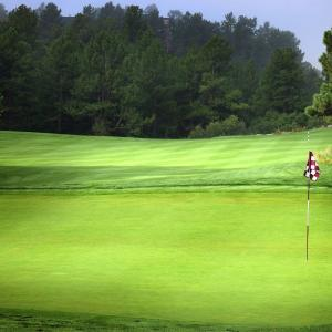 七転び八起きのゴルフ道