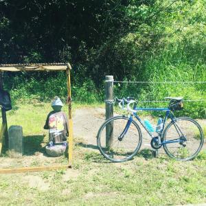 自転車で行きます