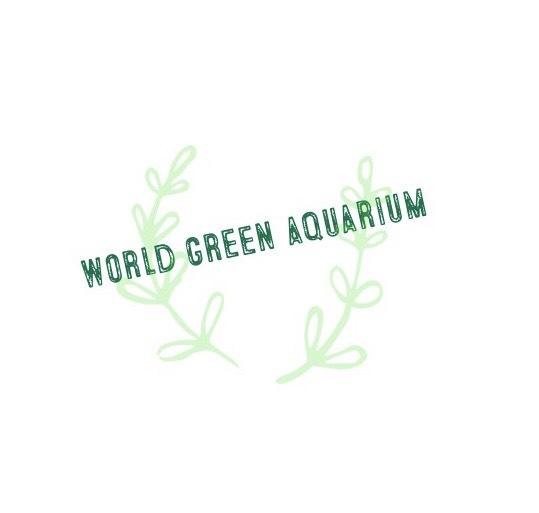 world-green-aquariumさんのプロフィール