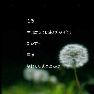 きぃちゃんの部屋