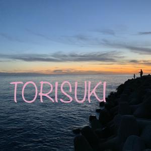 TORISUKIのどこへ行く