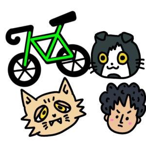 ぼく猫ロード。