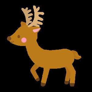 鹿の国で日々を楽しむ