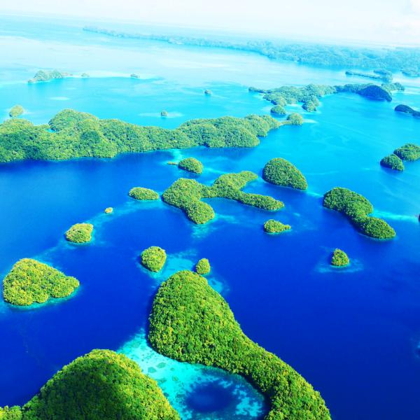 パラオ旅行の最新情報をお届けするWebメディア|Palautimes(パラオタイムス)さんのプロフィール