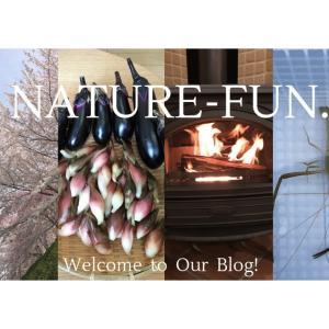 自然と日常|家庭菜園、生き物、薪ストーブ、釣り、風景