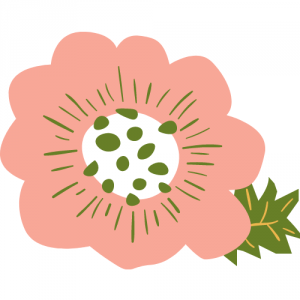 daisy-blog~アラフォー妊活ブログ~
