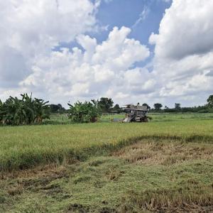 農タイ生活の備忘録