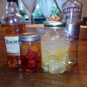海外生活で試した果実酒レシピと飲んだお酒のレビュー