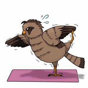 チョウゲンボウの健康雑記ブログ