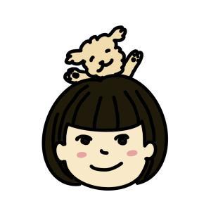イヌログ real teddy bear Maltipoo